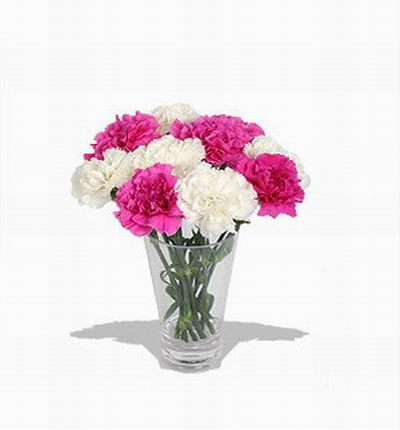Thailandcakes Carnations for Thailand